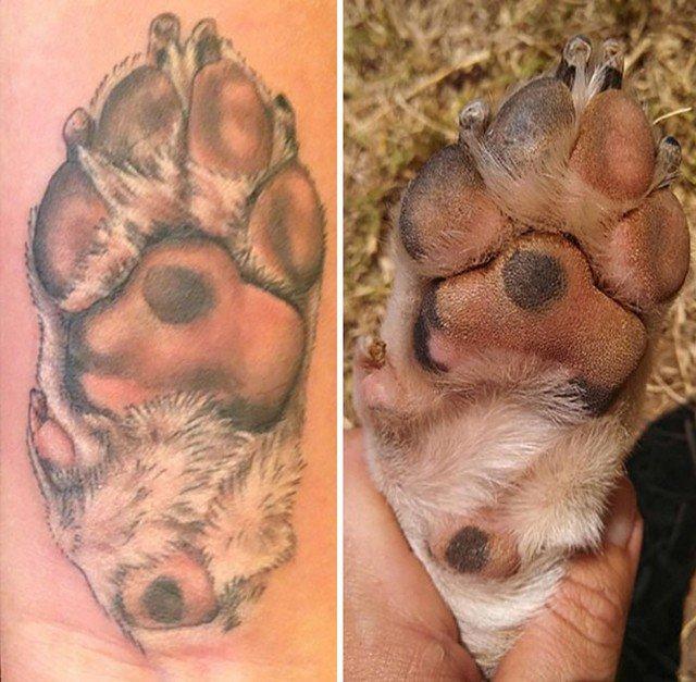 awebic-tatuagens-cachorros15