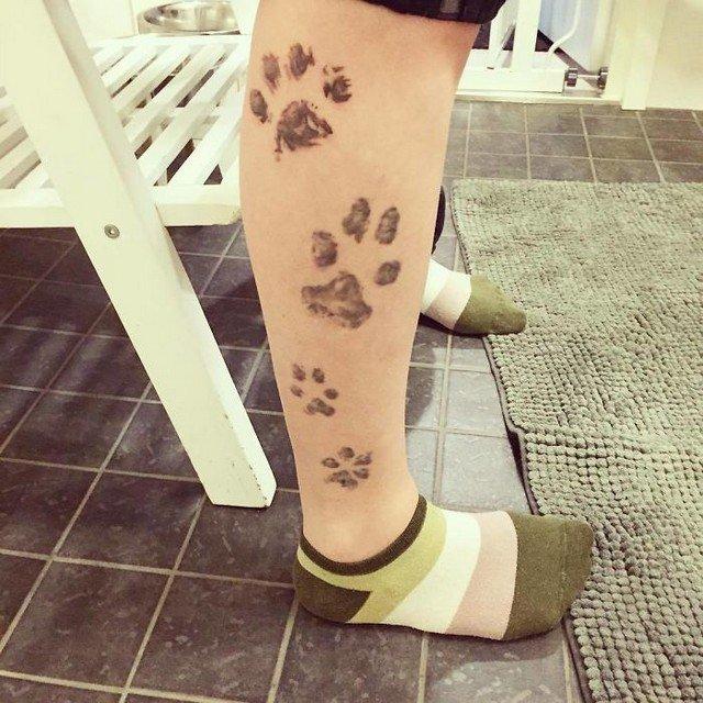 awebic-tatuagens-cachorros18
