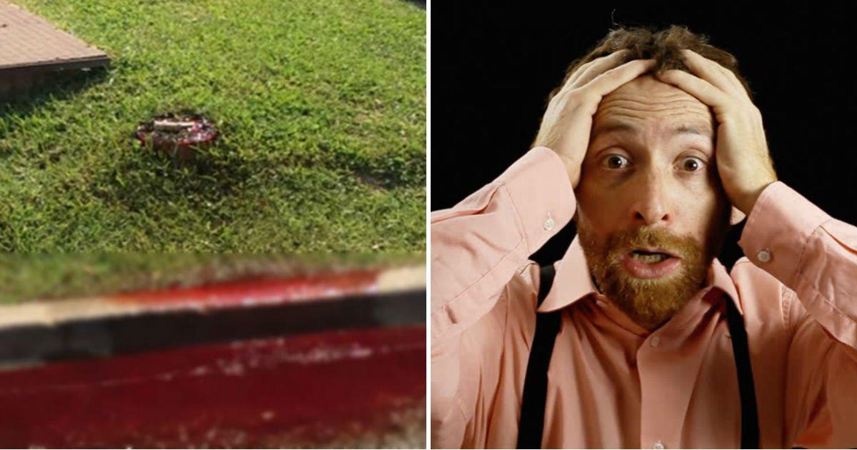 "blood.jpg?resize=412,232 - ""갑자기 잔디밭에서 '사람 피'가 흘러 나오기 시작했다"""