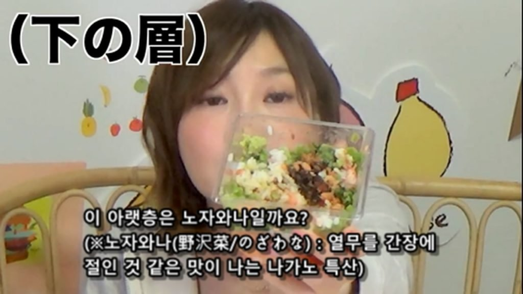 %e3%80%90mukbang%e3%80%91-the-top-10-ekiben-lunch-boxes-from-tokyo-station-142-dollars-in-total-cc-available-mp4_20170928_102041-094