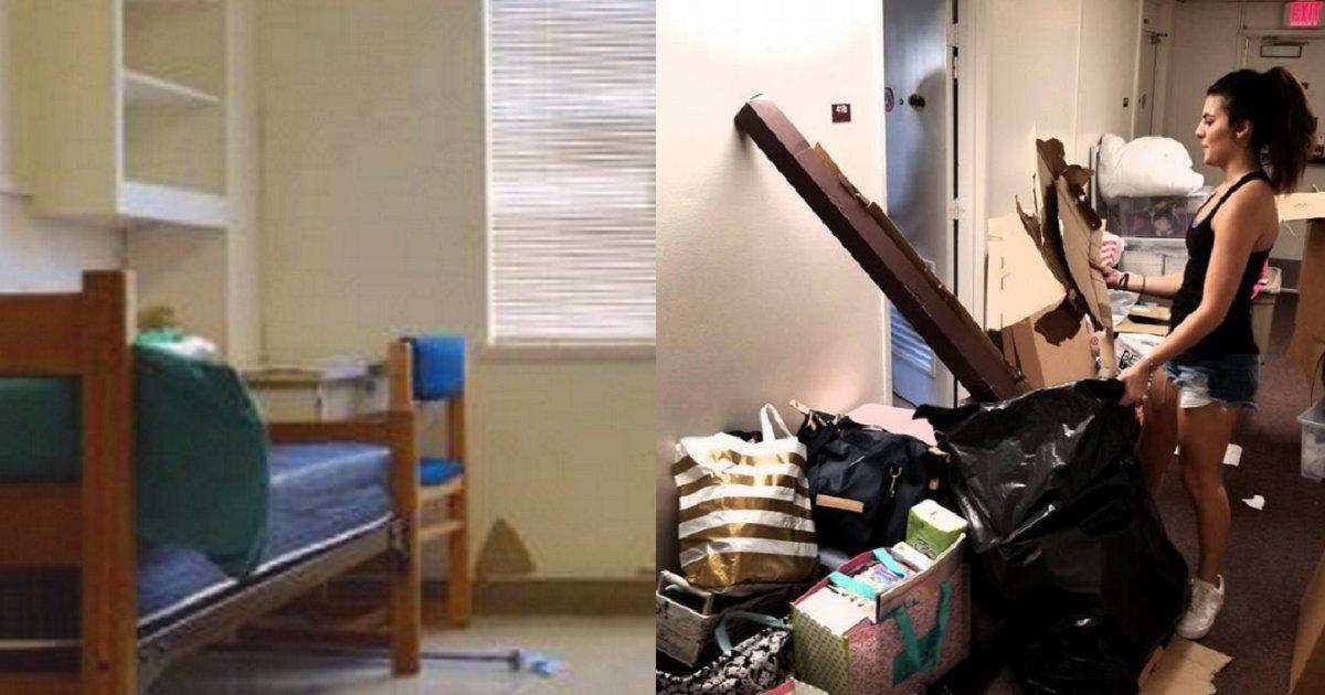 eca09cebaaa9 ec9786ec9d8c 24.png?resize=1200,630 - Displeased Students Transformed Boring Dorm Room In A Lively Retreat
