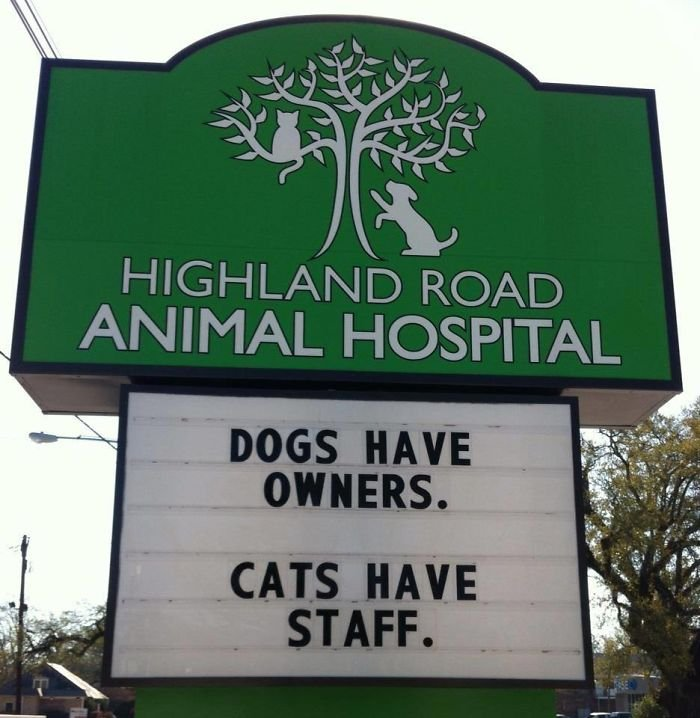 funny veterinarian signs 59ae5406674d5  700 - Genius Vet Signs That Will Make You Laugh