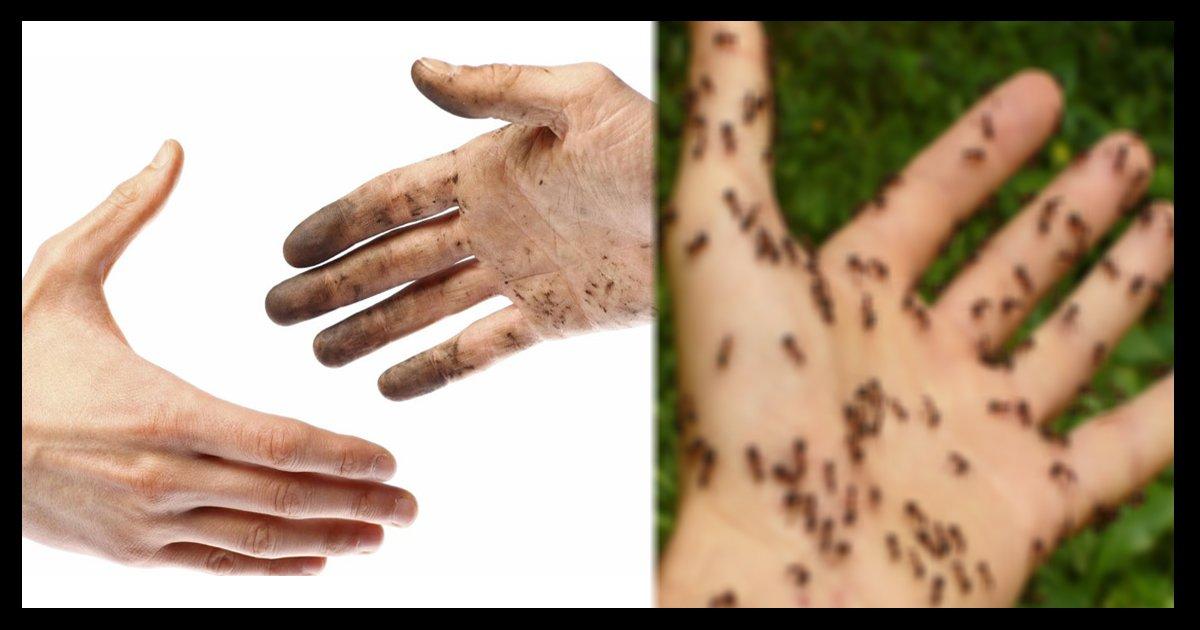 hand ttl.jpg?resize=412,232 - 【ショック】トイレのあと手を洗わない人の細菌、あなたの手にも移っている