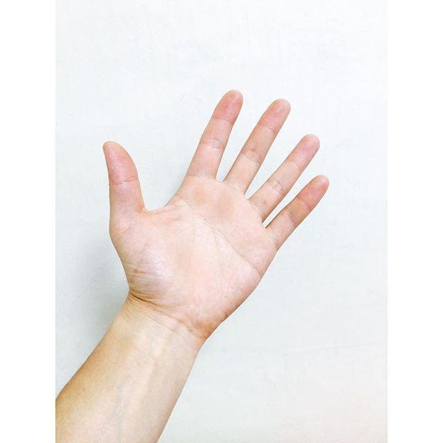 「양손」の画像検索結果