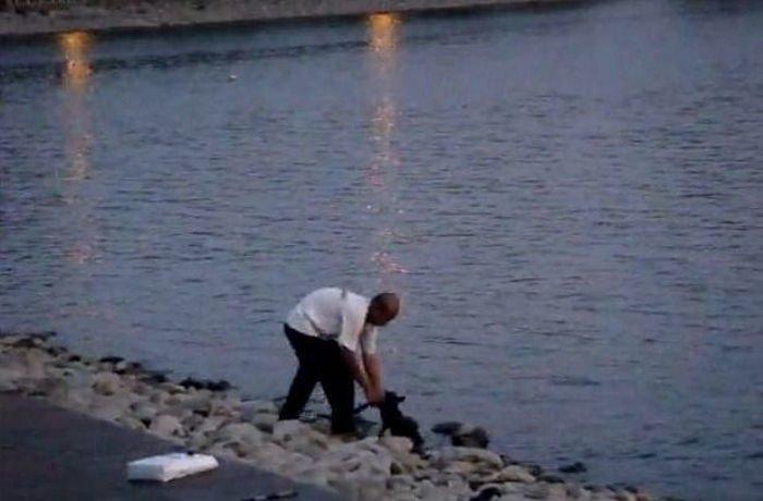 img 59c0b231ef100 - 邪魔だったと言い、ノラ犬を「川の中に」投げ捨てた男性