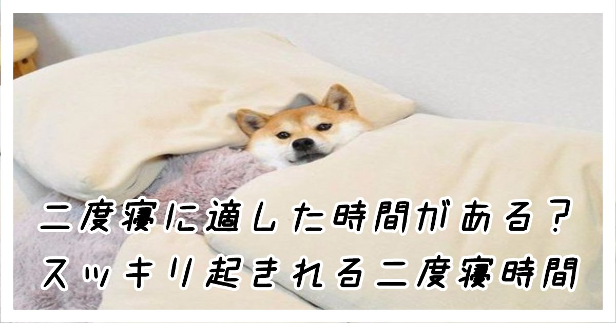 nidone th.png?resize=1200,630 - 二度寝に適した時間がある?スッキリ起きれる二度寝時間