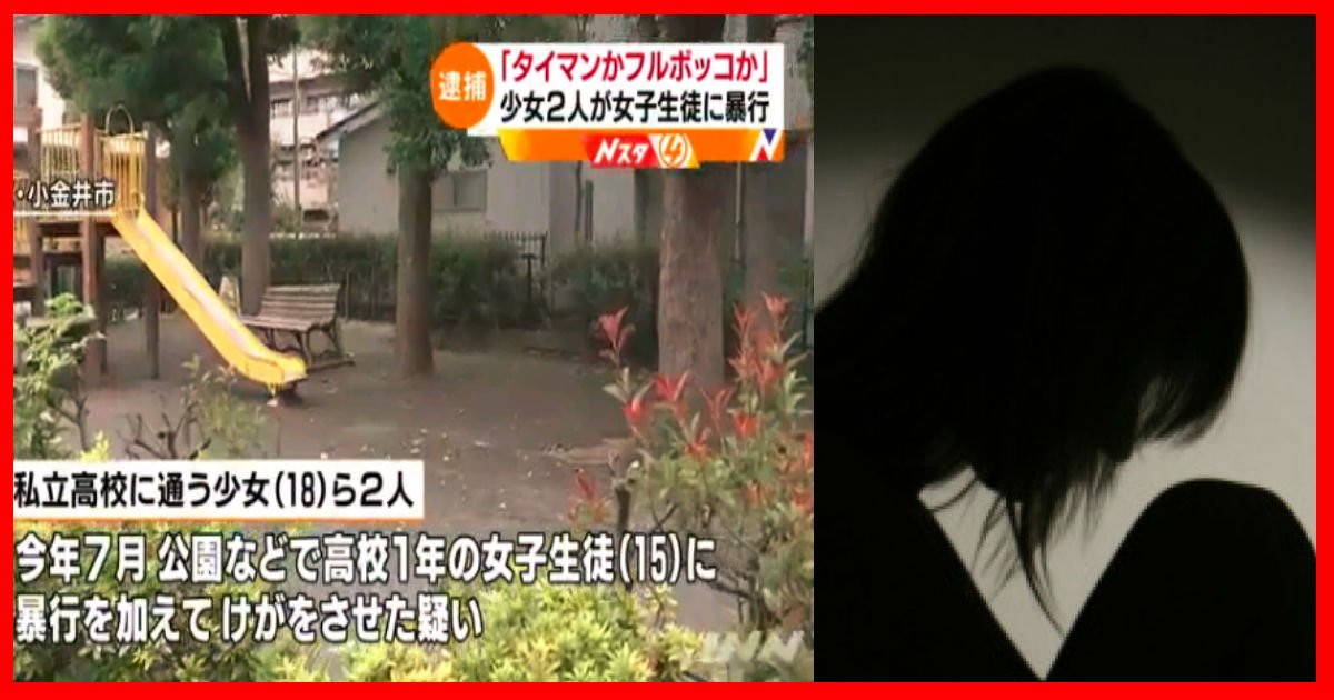 taimanfulmankottl.jpg?resize=1200,630 - 「タイマンかフルボッコか」少女2人が女子生徒に暴行
