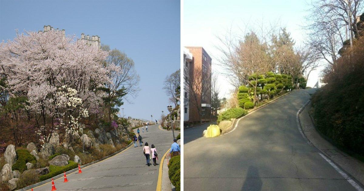 th - 엄청난 '언덕'을 자랑하는 대학교 캠퍼스 10곳