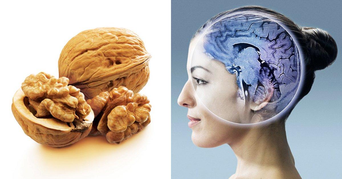 1 71.jpg?resize=648,365 - '신체 부위'를 닮은 11가지 '식품'들로 보는 건강 꿀팁