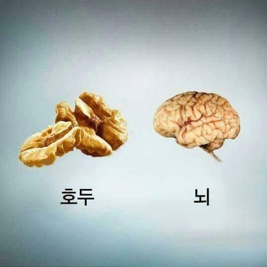 지식의 정석