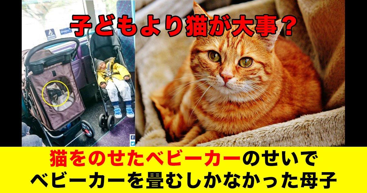 88 46.jpg?resize=1200,630 - 子どもより猫が大事?猫をのせたベビーカーのせいでベビーカーを畳むしかなかった母子