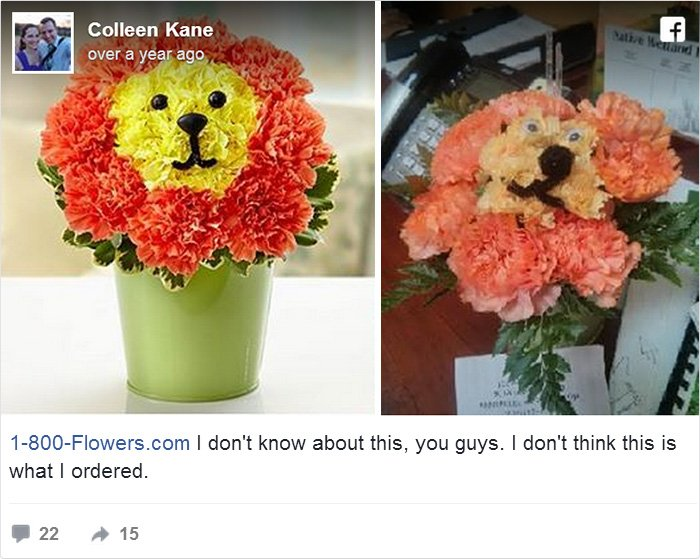 Colleen Kane