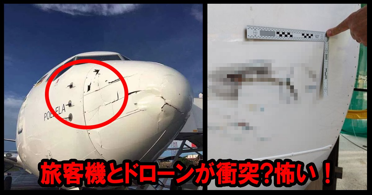 airplane ttl 1.jpg?resize=1200,630 - 旅客機とドローンが衝突!幸い「軽い損傷」で無事着陸