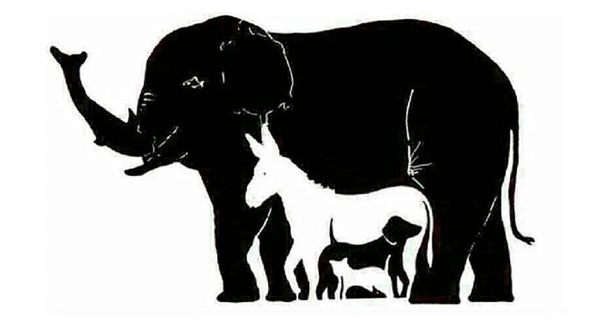 cover 26.png?resize=1200,630 - Apenas algumas pessoas conseguem identificar mais de seis animais nessa figura de ilusão de óptica