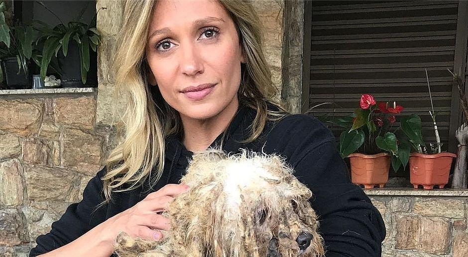 csm 30092017vpluisamellinstagram fino 7aaea57499.jpg?resize=412,232 - 135 cães são salvos de maus-tratos em São Paulo