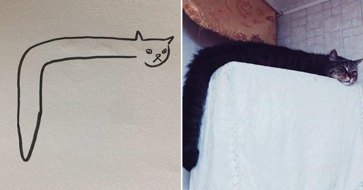 eca09cebaaa9 ec9786ec9d8c 5.png?resize=1200,630 - 뜻밖의 '극사실주의'로 화제가 된 고양이 낙서 10