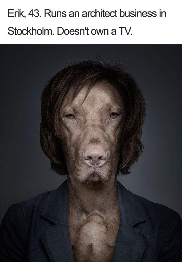 funny-dog-bios-78-59ad1bd7da892__700