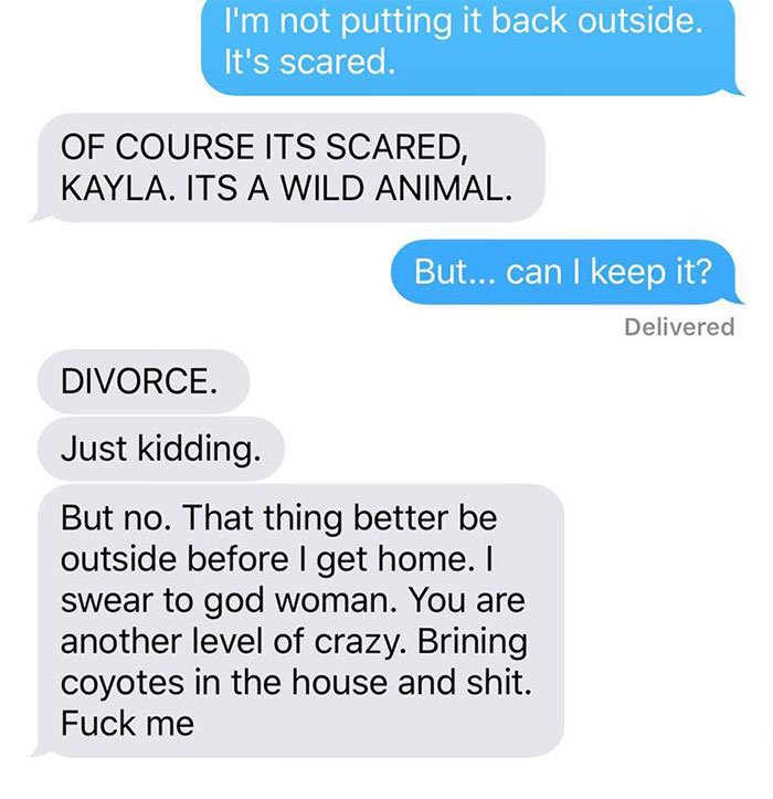 husband-freaks-out-after-his-wife-texts-him-she-brought-a-dog-home-while-the-pic-shows-its-coyote-5842a5ab76cad__700