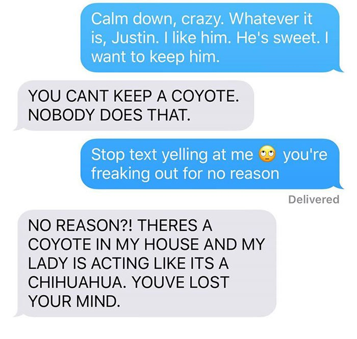 husband-freaks-out-after-his-wife-texts-him-she-brought-a-dog-home-while-the-pic-shows-its-coyote-5842a5d5dd6c0__700