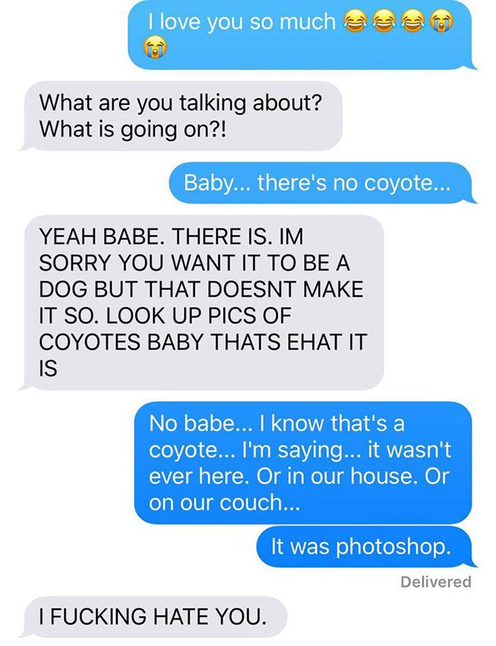 husband-freaks-out-after-his-wife-texts-him-she-brought-a-dog-home-while-the-pic-shows-its-coyote-5842a6073a7f9__700