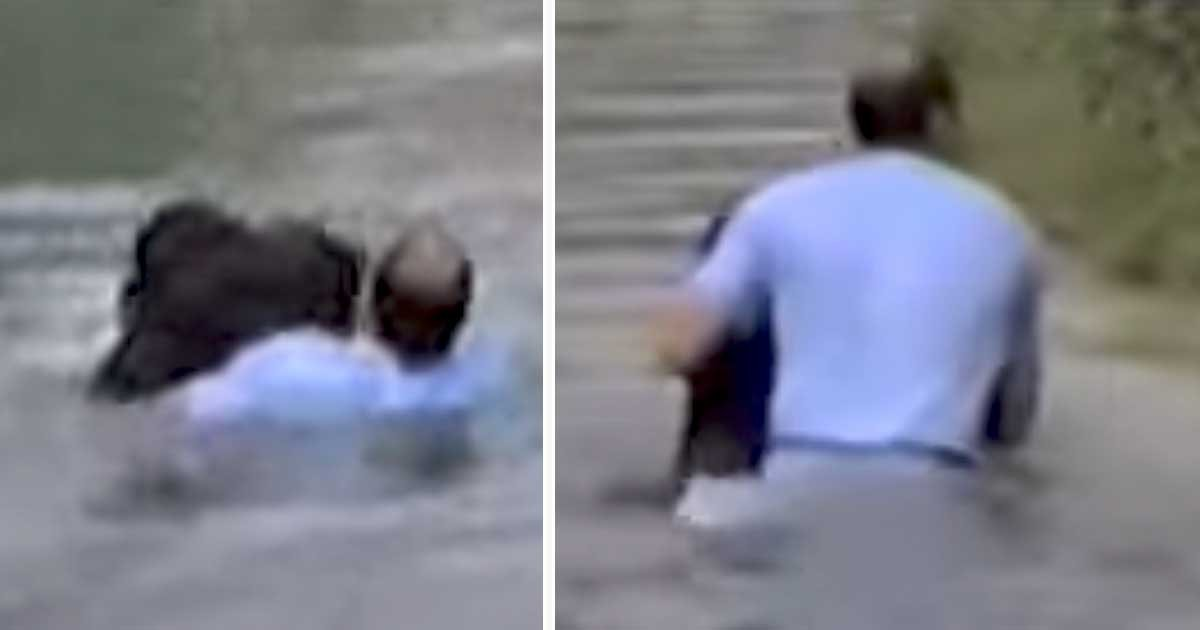 man saves drowning chimp featured.jpg?resize=300,169 - A Man Risks Life To Rescue Chimp From Drowning. Video Footage Impresses Millions of Viewers.