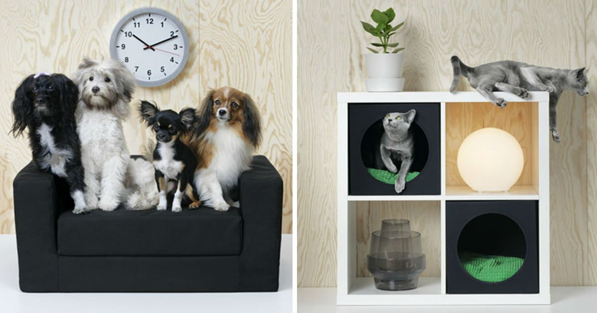 pet-furniture-collection