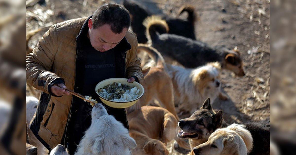 portada 16.jpg?resize=1200,630 - Tras perder a su perro, joven millonario chino dedica su fortuna al rescate de perros callejeros.