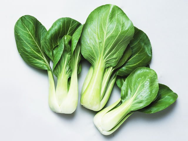 1 760.jpg?resize=1200,630 - 青梗菜の保存方法と中華レシピを大公開
