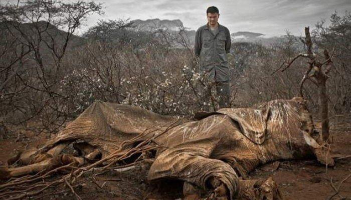 Kristian Schmidt/Wild Aid/Foundation for Deep Ecology
