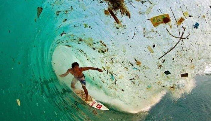 Zak Noyle/Foundation for Deep Ecology