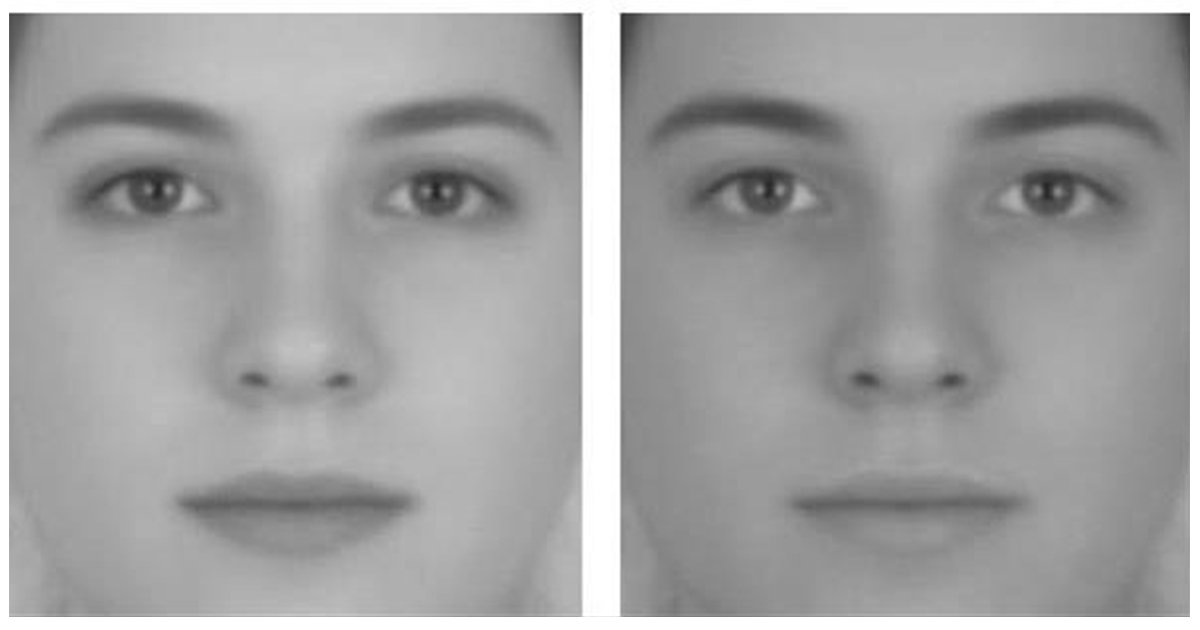 article thumbnail 1 - 두 눈을 의심하게 만드는 '착시현상' 사진 모음(+17)