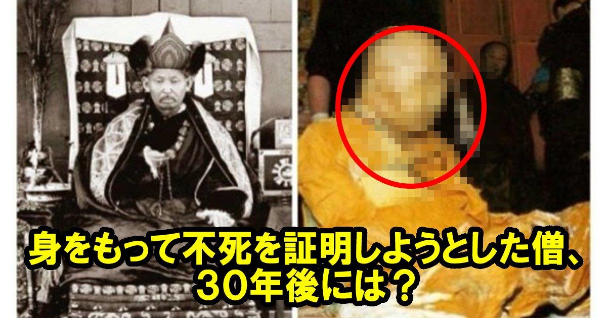 buddha ttl.jpg?resize=1200,630 - 【観覧注意】不死を証明するため、30年後に遺体を掘り起こした結果・・・