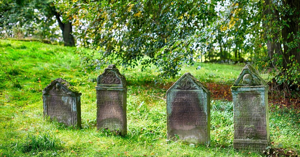 cemetery 2773827 1920.jpg?resize=1200,630 - 남편 묘 위에 '쓰레기'를 두고 간 범인의 정체 (사진 3장)