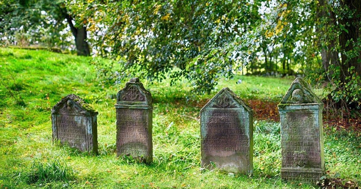 cemetery 2773827 1920 - 남편 묘 위에 '쓰레기'를 두고 간 범인의 정체 (사진 3장)