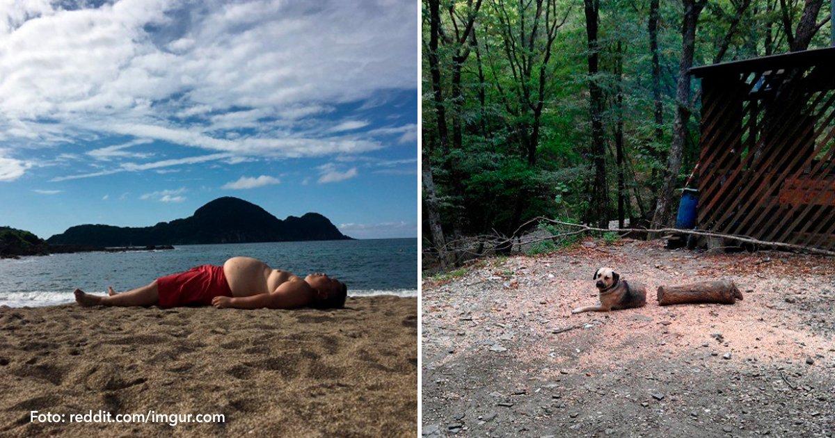 cover 51.jpg?resize=648,365 - 15 sorprendentes fotos nos muestran que la realidad a veces puede ser engañosa