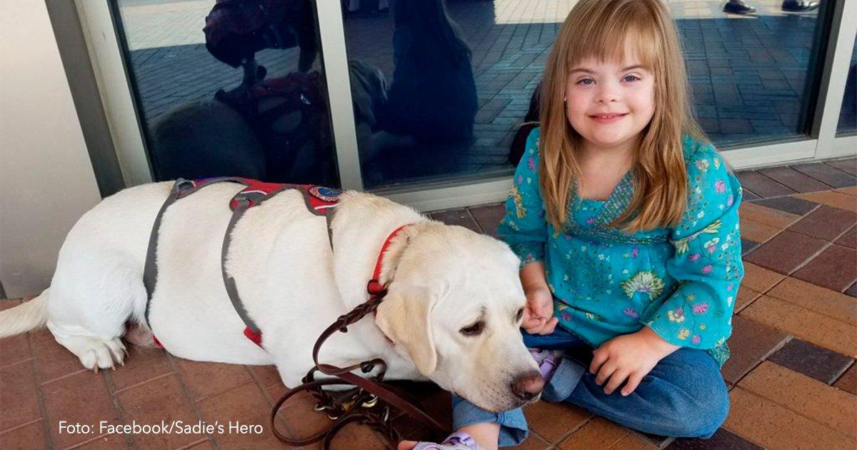 cover5 - Su perro comenzó a actuar muy extraño, entonces llamó al profesor de su hija y esto fue lo que paso…