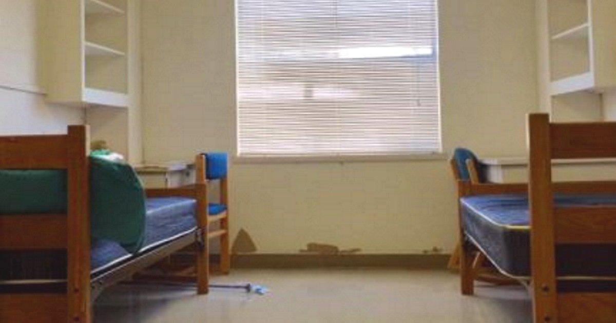 Image result for Skylar Bentz dorm