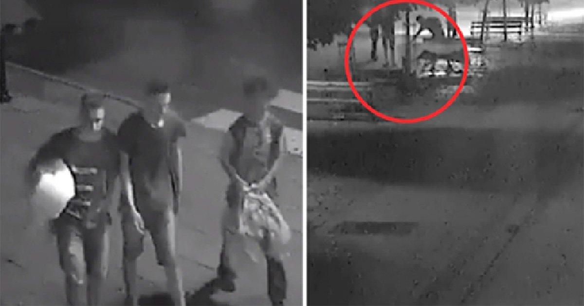 ec8db8eb84ac 6.jpg?resize=648,365 - Câmera de segurança captura jovens com um cobertor nos braços se aproximando de um sem-teto no meio da noite