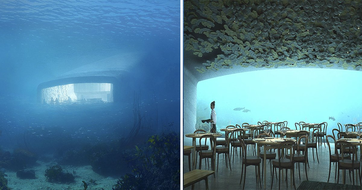ec8db8eb84ac ebb3b5eab5aceb90a8 ebb3b5eab5aceb90a8 12 - First Underwater Restaurant. Europe Rocks From Its Outlook, But Not Until You Step Inside