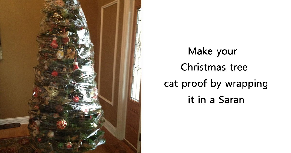 ec8db8eb84ac ebb3b5eab5aceb90a8 ebb3b5eab5aceb90a8 18.jpg?resize=412,232 - 15+ Clever People Who Found A Way To Protect Their Christmas Trees From Asshole Cats And Dogs