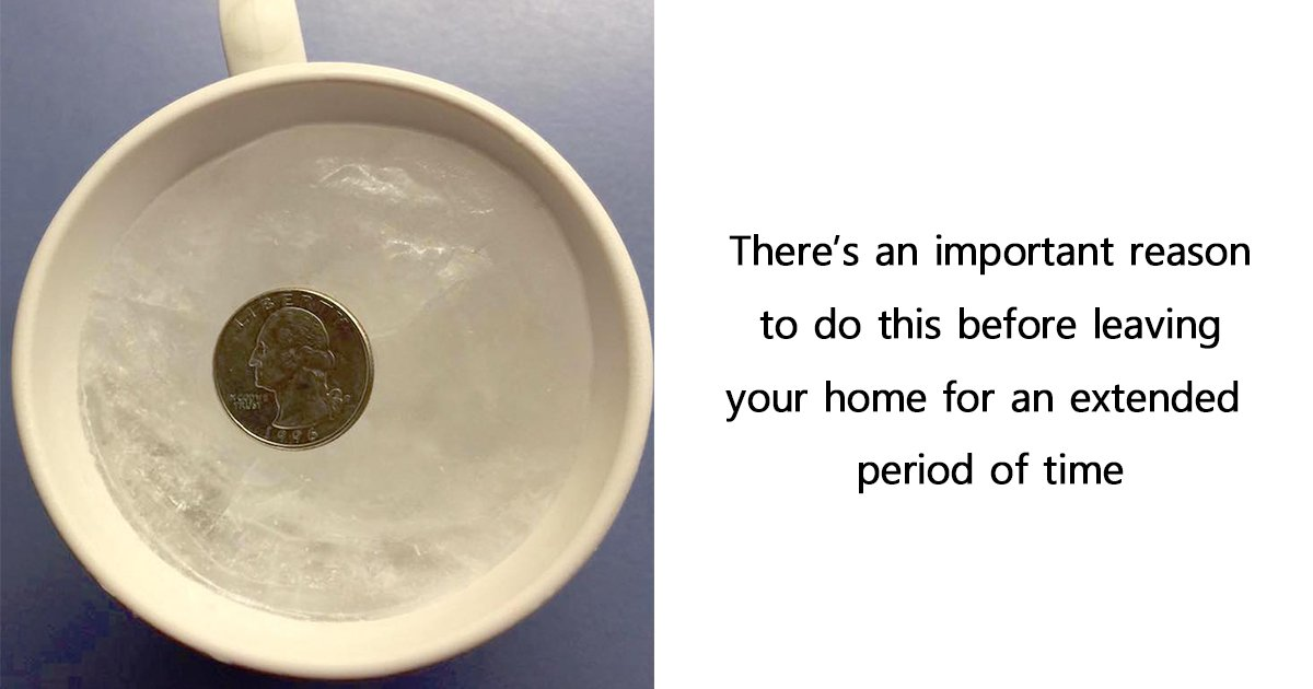 ec8db8eb84ac ebb3b5eab5aceb90a8.jpg?resize=636,358 - You Should Always Put a Quarter On a Frozen Cup of Water Before leaving your home