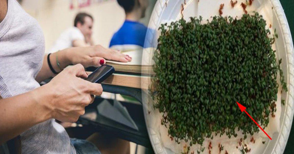 ec8db8eb84ac1 8 - ¡Un Experimento De Secundaria Demuestra Los Posibles Peligros Del Wi-Fi!