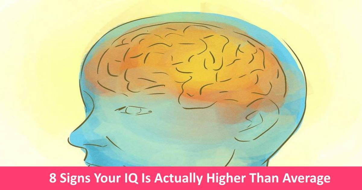 highiq - 8 Signs Your IQ Is Actually Higher Than Average