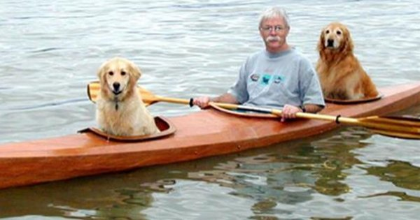 kayak 2.png?resize=300,169 - Retired Man Builds Special Kayak To Share His Favorite With His Dogs