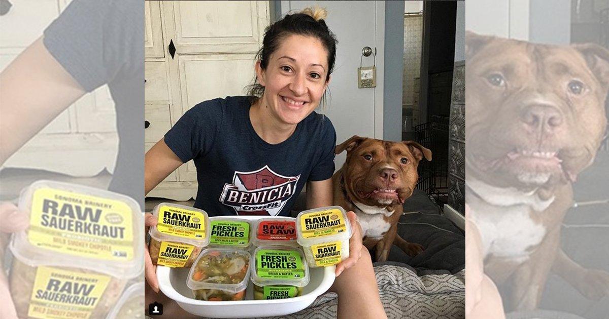 mainphoto meaty.jpeg?resize=1200,630 - [Photos] Voici Meaty, le bulldog au sourire ravageur