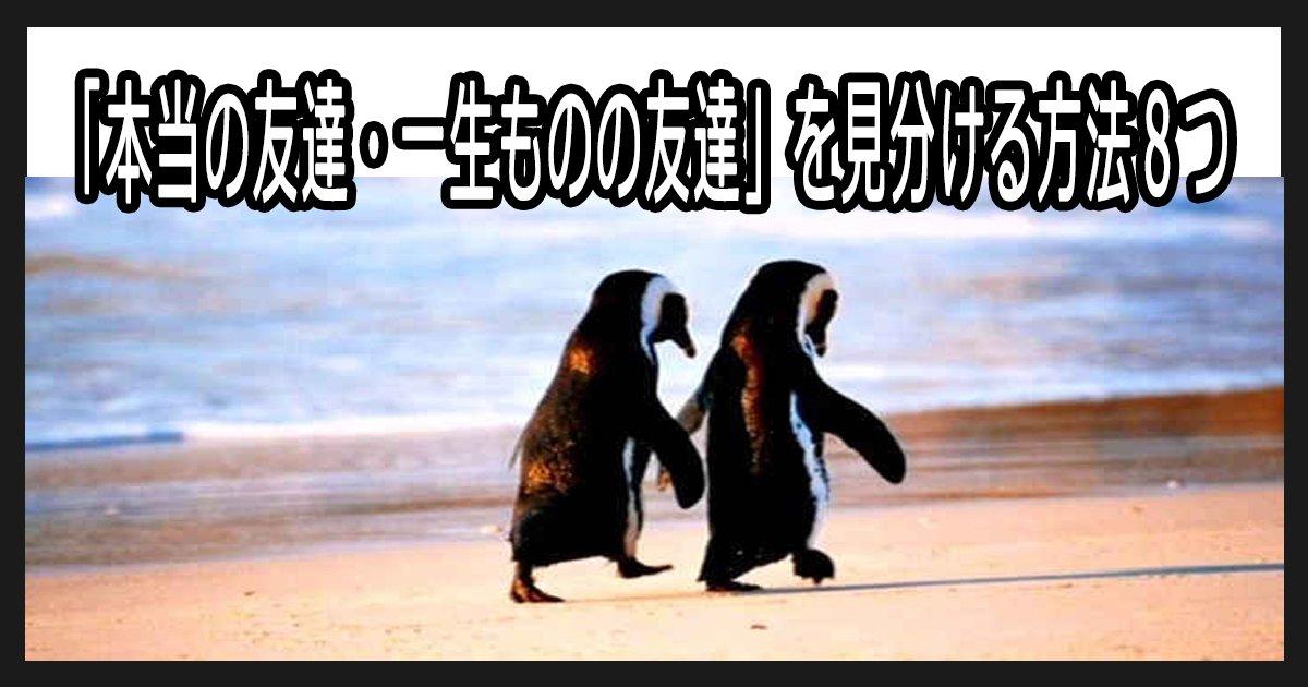 sinyukakunin th.png?resize=412,232 - 「本当の友達・一生ものの友達」を見分ける方法8つ