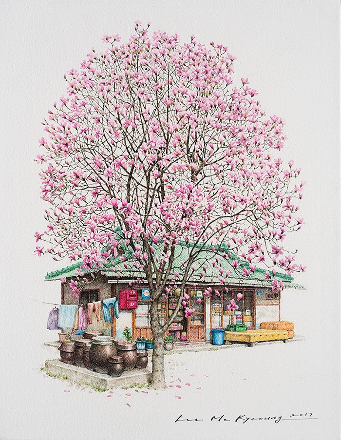 south-korea-shops-drawings-me-kyeoung-lee-8-58ca88c631402__700