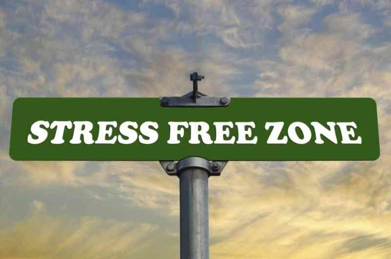 stress-free-zone-970x644