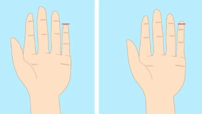 171209 101 - 現在馬上看看你的小指!你的人生秘密,小指全知道