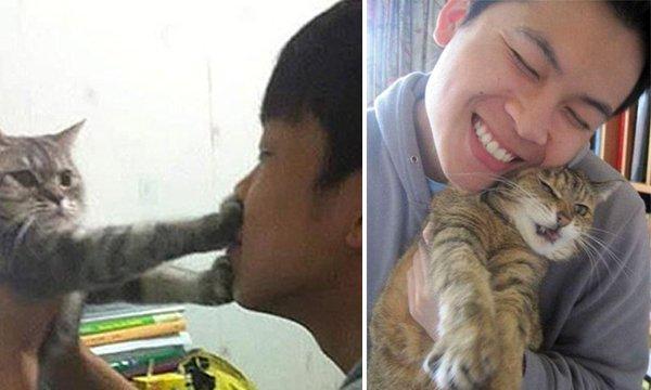 171211 220.jpg?resize=648,365 - 只是想和愛貓自拍,卻惹怒貓主子的卑微貓奴全紀錄